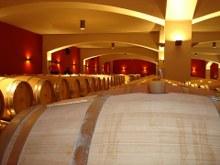 Bulgaarse wijnkelder